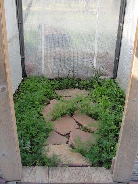 grhouse (480x640)